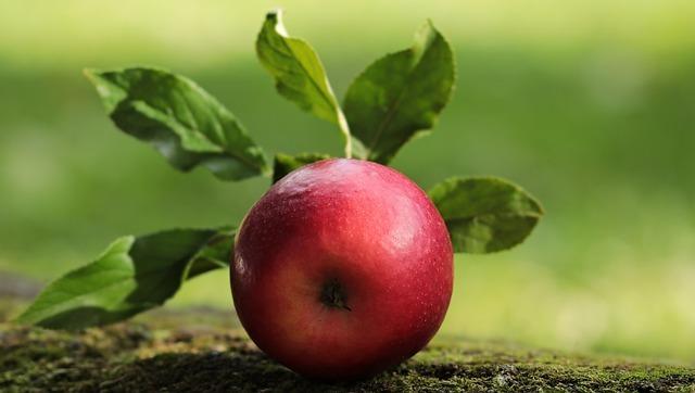 apple-2924531_640.jpg
