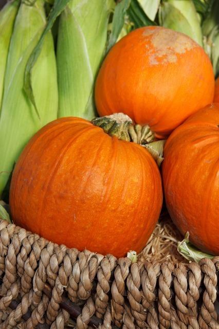 autumn-2824_640.jpg