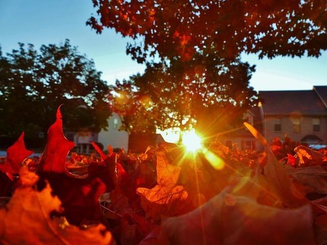autumn-314486_640.jpg