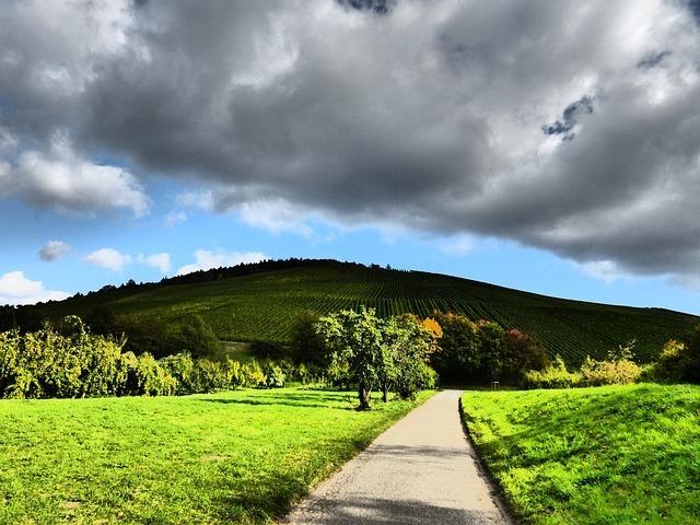 autumn-60188_640.jpg