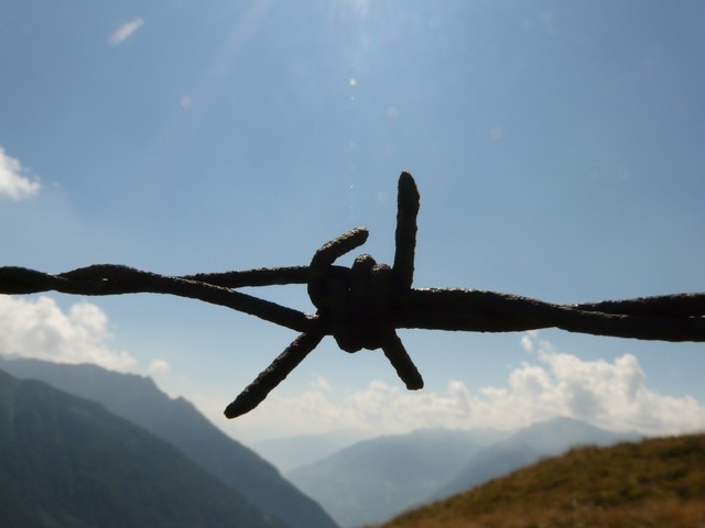barbed-wire-16_640.jpg