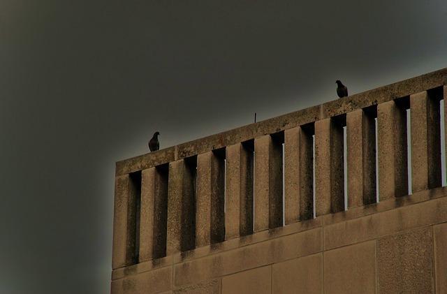 bird-22857_640.jpg