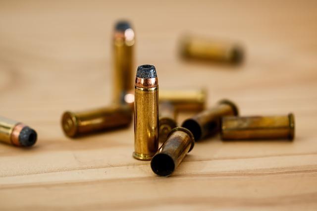 bullet-408636_640.jpg
