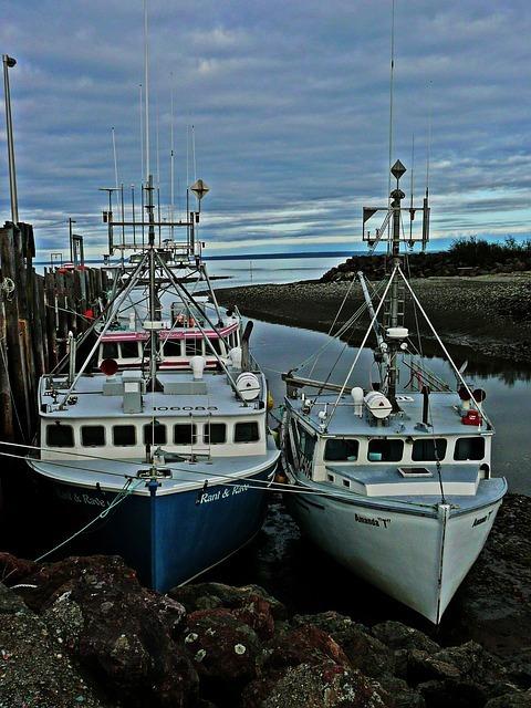 fisher-50264_640.jpg