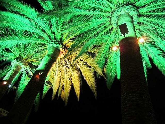 green-light-63362_640.jpg