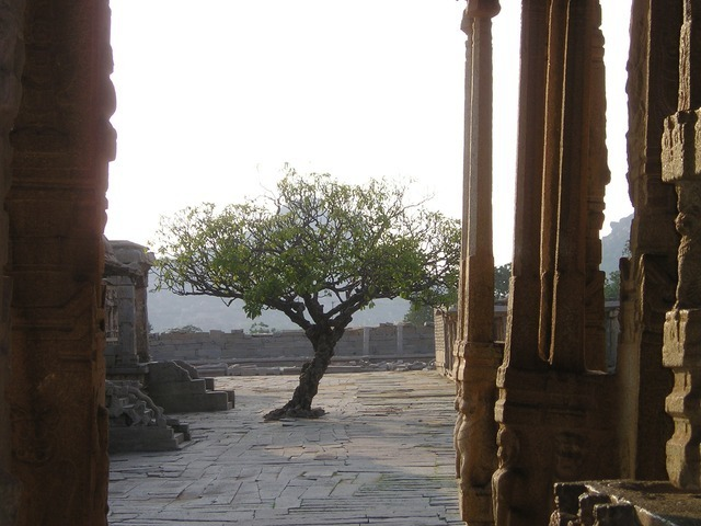 india-316_640.jpg
