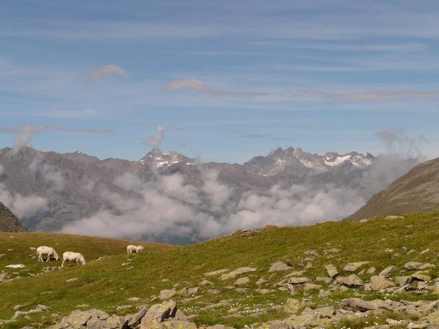 mountain-804_640.jpg