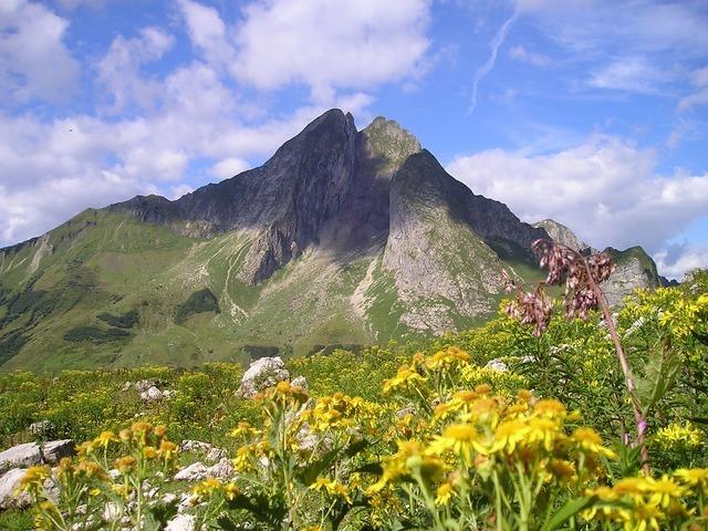 mountains-891_640.jpg