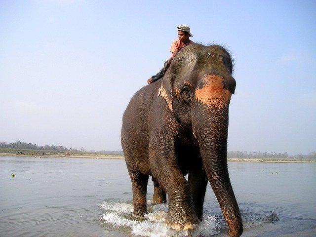 nepal-379_640.jpg