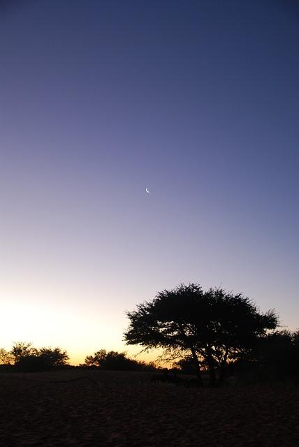 night-55247_640.jpg