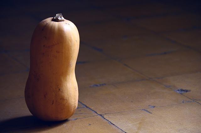 pumpkin-58931_640.jpg
