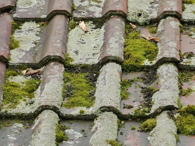 roof-58965_640.jpg