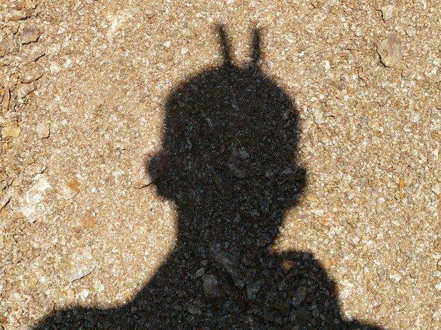 shadow-536_640.jpg
