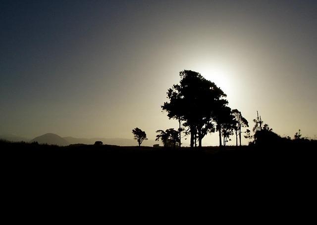 silhouette-50229_640.jpg