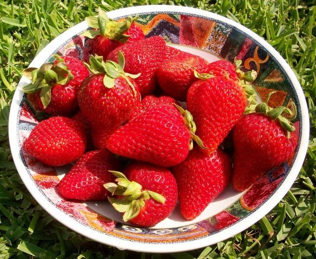 strawberries-229_640.jpg