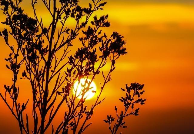 sunset-203188_640.jpg