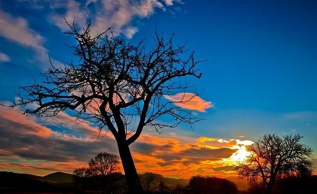 sunset-229335_640.jpg