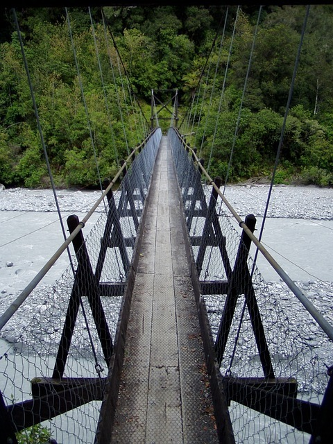 suspension-bridge-50222_640.jpg