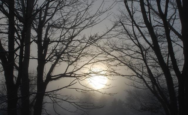 winter-2811_640.jpg